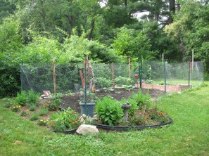 CornerVegetableGarden_June22_2012